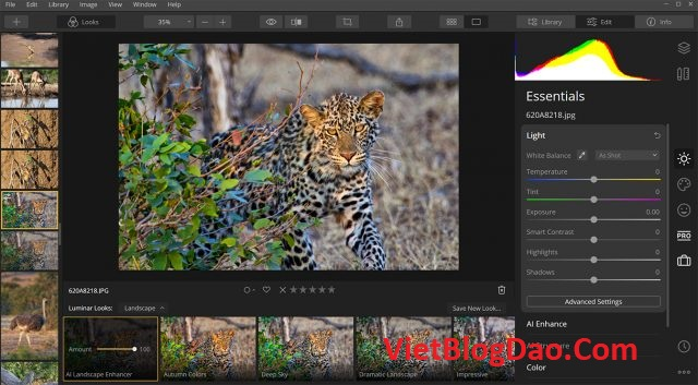 Luminar 4 key image editing software